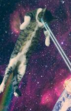 LE CATS FROM OUTER SPACE by SpaceCats