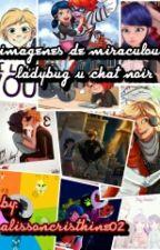 Imagenes De Miraculous Ladybug Y Chat Noir by Cris_Agreste02