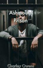 Ashmount Prison by fvxkboi