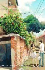 Tốt nhất tình nhân ● Tâm Tâm - Mộ Quang Vi Mị by Poisonic