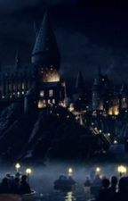Hogwarts: The Marauders Years by Trycatchme