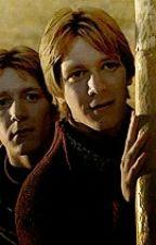 Liebe Auf Umwegen - Harry Potter FF/ Fred Und George Weasley by ohneanstand