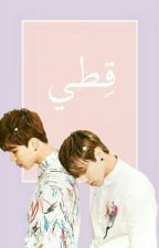 قِطّي. || Jikook by cchhhaanbaek