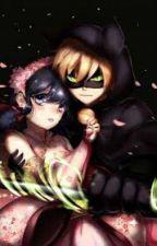 Chat Noir y La Princesa (Marichat) ♡♥ by akiretkm