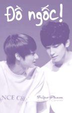 Đồ Ngốc! | Longfic | JunWon & GyuHan by SJS1713