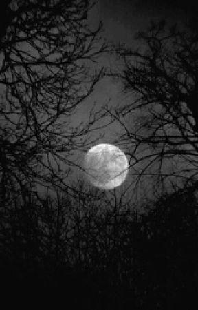 Rise of the Dark by Fiy_Fox