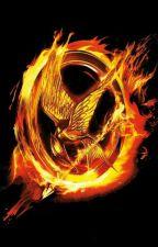 Hunger Games by RaresStan5