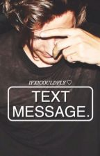 TEXT MESSAGE. // L.T by wholsem