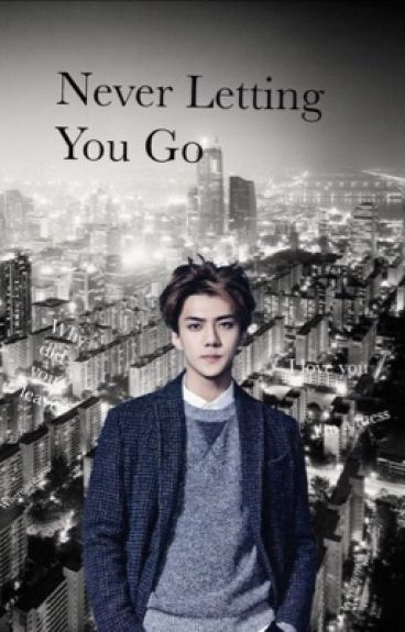 Never letting you go (seyoung) [completed]