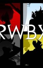 RWBY x Male! Reader- New Game by darkprince171