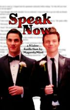 Speak Now (Klaine/Glee) by MagentaMint