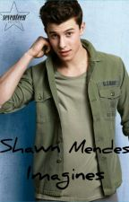 Shawn Mendes Imagines by awesomechocolate13