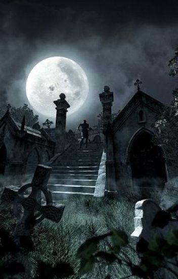 Murderer of the Night
