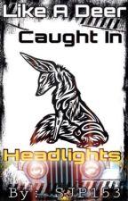 Like a Deer Caught in Headlights  by SJP153