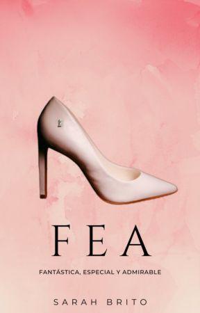 FEA  by SNBrito