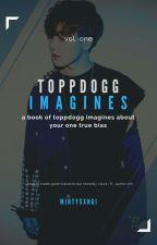 [hiatus] toppdogg »  imagines by mintyxxngi