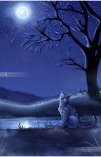 Nightclan Roleplay by _-Windcloud-_
