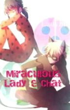 Miraculous Lady e Chat by Sofi_DiCavalcanti