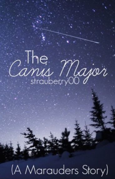 The Canis Major