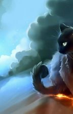 Warrior Cats RP [Open] by MyDreamOfWolves