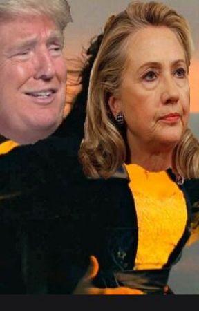 Donald Trump x Hillary Clinton by Lauren10150