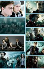 Harry Potter Fakten Teil 2 by Elfen-Kuss