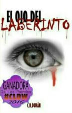El Ojo del Laberinto by CRDuran