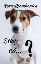 Stiati ca...? by NoricaBombonica