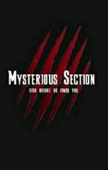 Mysterious Section [COMPLETED]