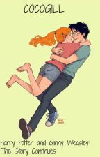 Harry Potter and Ginny Weasley: The Story Continues by cocogill