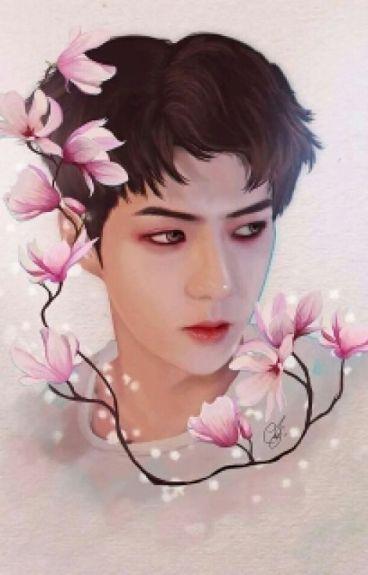 My Love /Hanhun