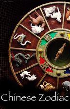 Chinese Zodiac by -JakeVader-
