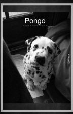 Pongo -[Alanso Villalvarro]  by MikuDanny