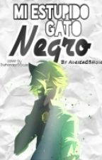 Mi Estúpido Gato Negro [Chat Noir/Adrien Y Tu] #ChangerMLBFandom by Adrien03Noir