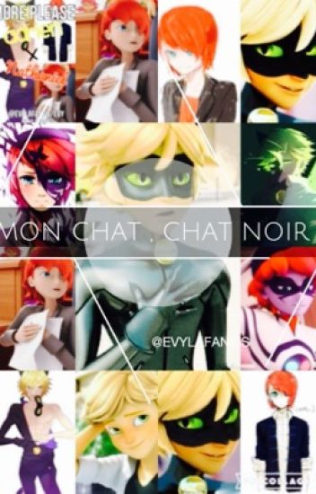 Mon Chat, Chat Noir