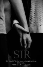 SIR by cikita_ananas
