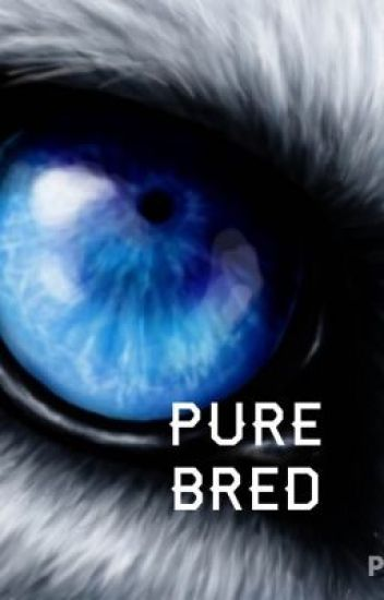 Pure bred (Revising)