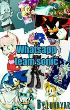 Team Sonic Whatsapp by lunayar