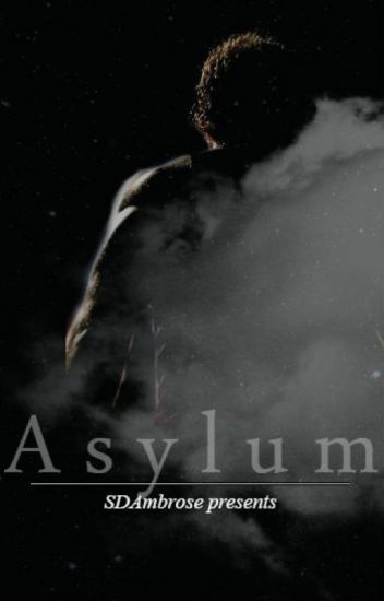 Asylum (Sequel to Sanctuary, WWE Fanfiction)
