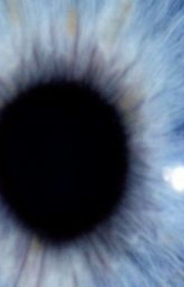 Les yeux glacés de Kurt Höchmuter
