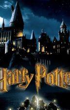 Harry Potter Preferences by okaynixc