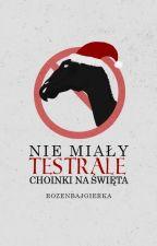 Nie miały testrale choinki na Święta || Dramione by rozenbajgierka