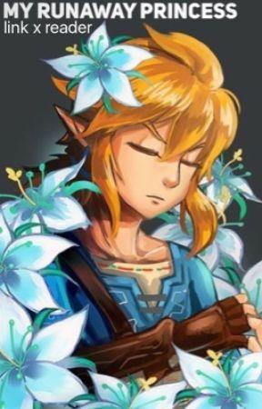 My Run-Away Princess (Link X Reader) by linkinky