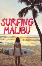 Surfing Malibu by abmcf00