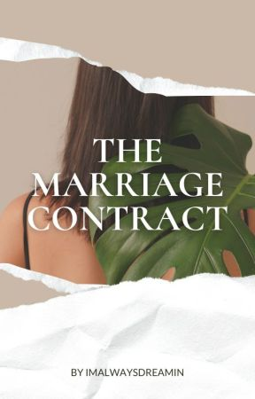 dating contract wattpad my