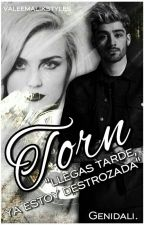 Torn  |Zerrie| by genessisdalia
