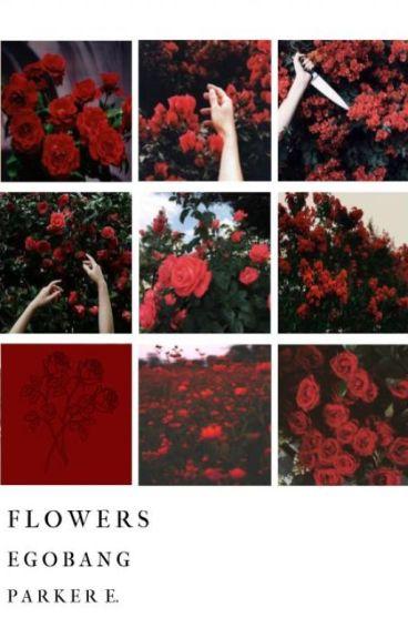 flowers :・゚✧ egobang