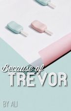 Because of Trevor {Lashton AU} (sequel to Because of Lucy) by dancinginthestreet