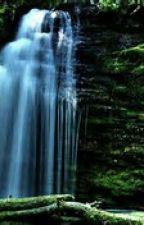 Percy Jackson/Shadow Falls Crossover by makayla2604