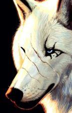 Alpha King.......My MATE by ZombieCraze2